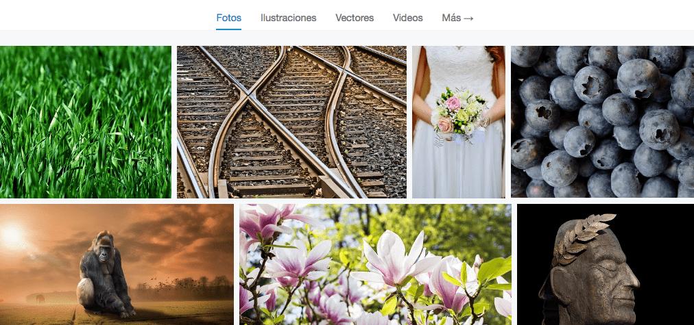 pixabay banco de fotos gratis